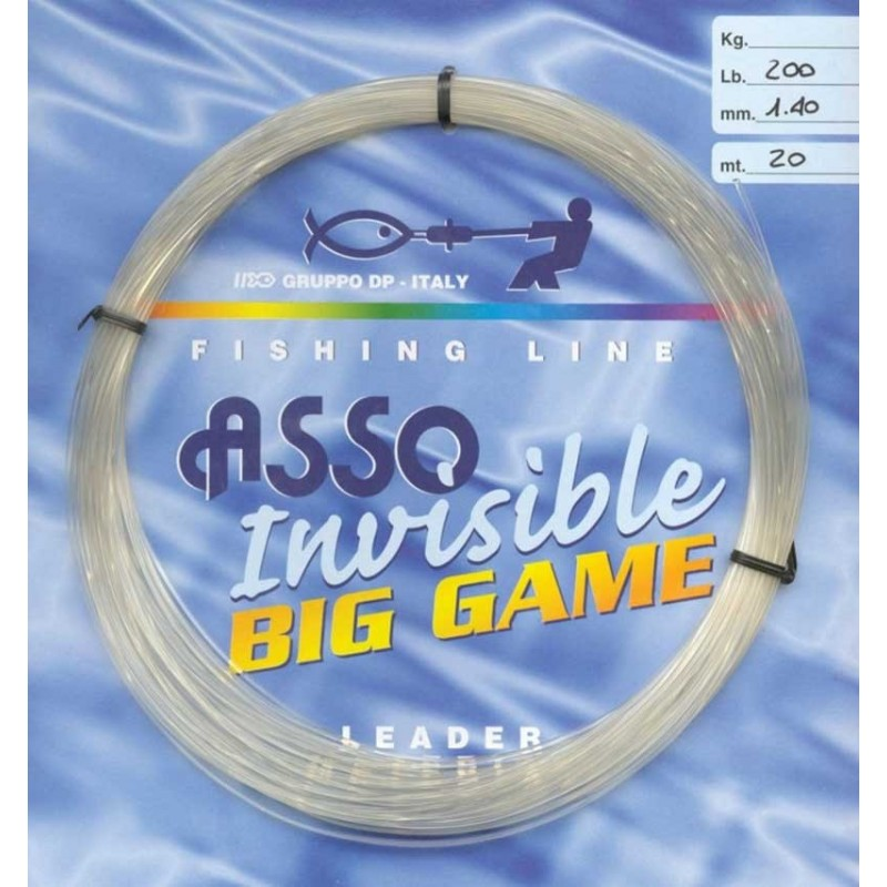 Invisible Big Game